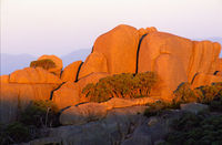 LS102 Sunset, Mt Buffalo National Park, Victoria