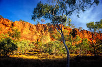 OB101 Sunrise, Boodjamulla National Park (Lawn Hill), Queensland